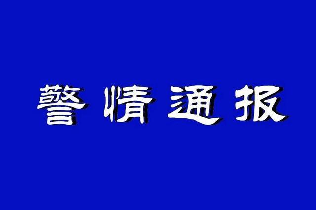 沈阳一69岁男子与公交司机争执并抢夺方向盘被刑拘