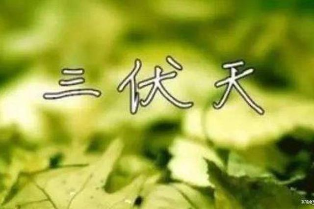 """12日""""入伏""""""""桑拿""""上线 """"蒸煮""""或""""烧烤""""模式开启"""