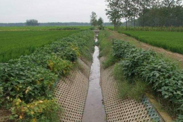 今年辽宁省投入农业保险保费补贴资金超16亿元