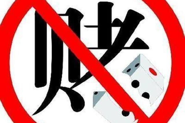 沈阳辽中警方破获一起网络开设赌场案