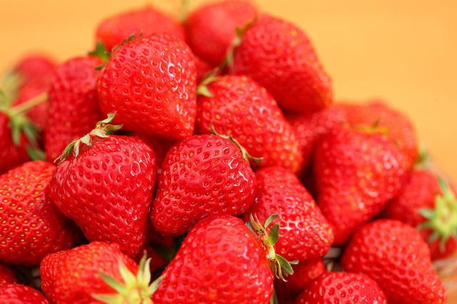 """辽宁土特产 丹东九九草莓:纯天然的""""牛奶草莓"""""""