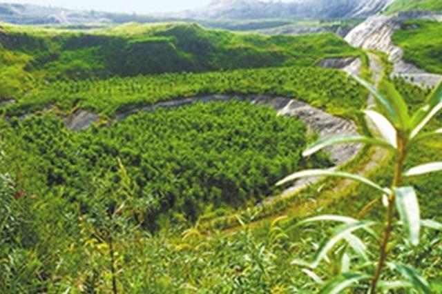 辽宁省今年计划再完成闭坑矿山治理近3万亩