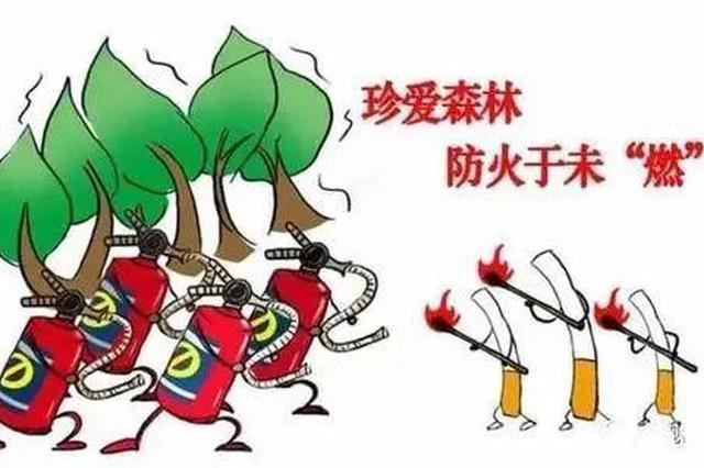 沈阳强化森林防火各项措施