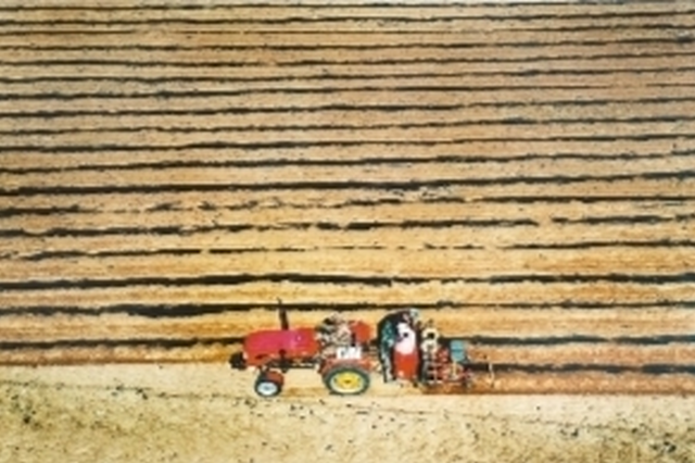 辽宁省旱田粮食作物播种已达计划八成