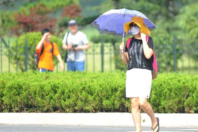 今明两天沈城局部地区达35~37℃