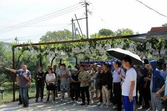 今年辽宁省培育1.5万余名高素质农民