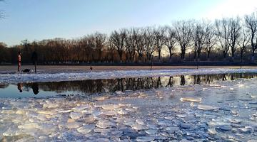 沈阳冬天的北陵公园