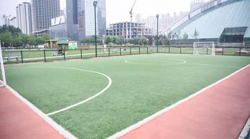 沈阳五里河体育场变身儿童足球公园