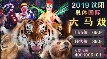 沈阳奥体国际马戏美食节惊艳来袭