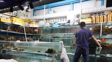 大连市内大型水产品市场:缩短营业时间 严格防疫消毒
