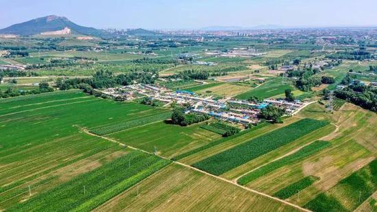 辽宁省明年拟向全省农村派驻百个科技特派团