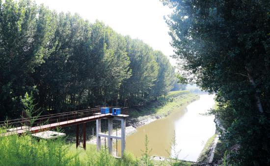 太子河旁的排水渠只有浅浅的水面。