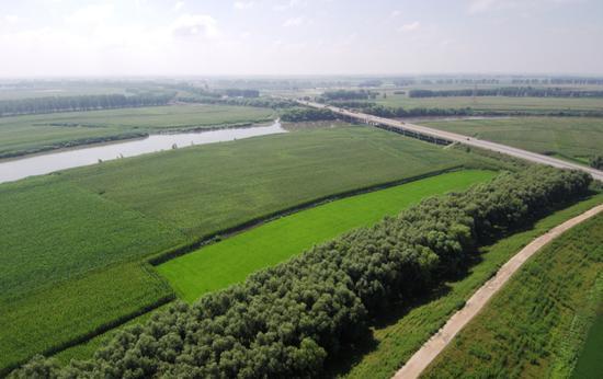 三条大河水势平稳 两侧庄稼茁壮成长