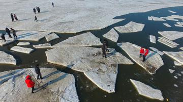 辽宁大连:渤海海冰融化