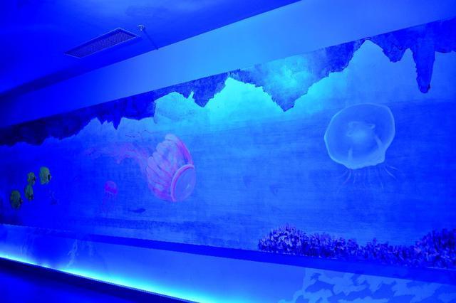 辽宁沈阳一商场现50米长3D极地海洋长廊