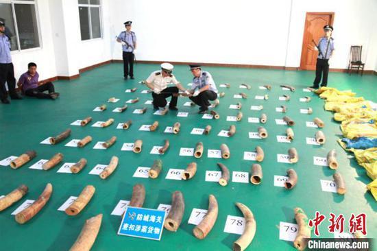 广西严打濒危物种走私犯罪 查扣象牙逾9673千克