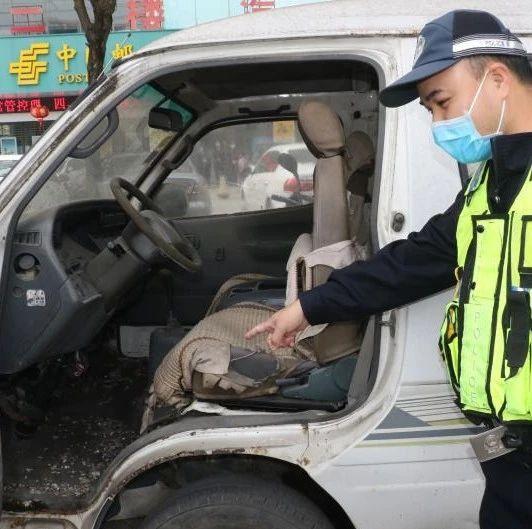 """南宁交警清理""""僵尸车"""" 发现其中一辆满是老鼠粪便"""