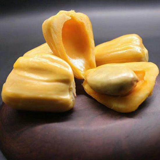 菠萝蜜的果肉和果核。
