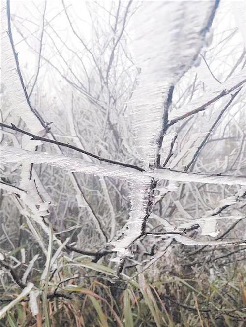 贺州大平龙槽村出现冰凌 刘黅 摄