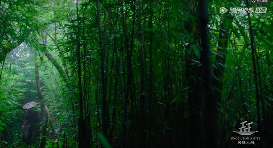 四川瓦屋山。图片来源/《风味人间》第一集视频截图