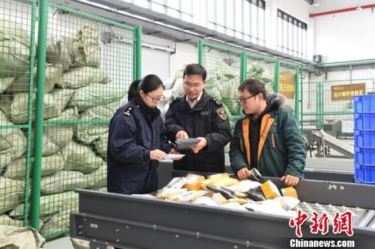 图为杭州海关隶属义乌海关关员抽核邮件信息 朱路鹏 摄