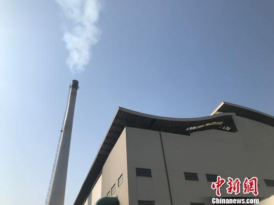 假烟在焚烧厂焚烧后,烟囱冒出的白烟 郭文锐 摄