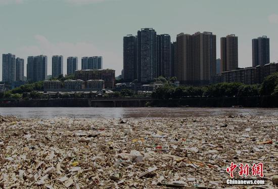 受降雨影响 长江重庆段江面上出现大量垃圾