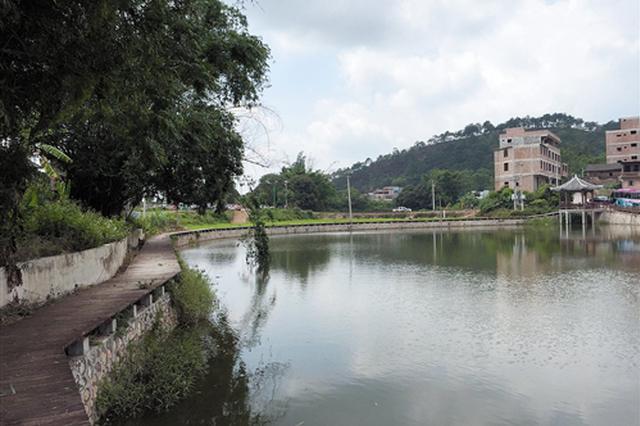 南宁:核心区可观水景走稻田再逛博物馆