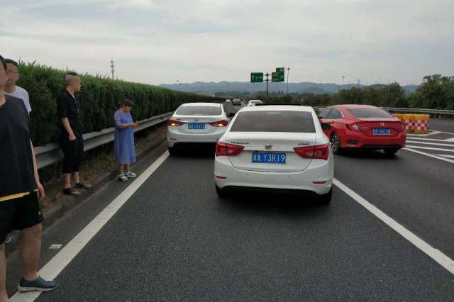 浙江任性大姐高速错过出口连忙停车 后方三车中招