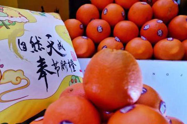 """重庆奉节举行脐橙开园节 培育三峡""""甜蜜""""产业"""
