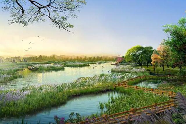 天津这个国家级湿地公园今年开放!每次呼吸都清新