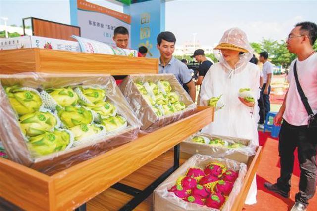 乐东农产品热销 一天销售额超20万元
