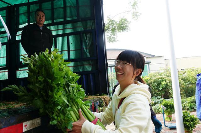 3万多斤尚义西芹认购一空 爱心助农我们在行动