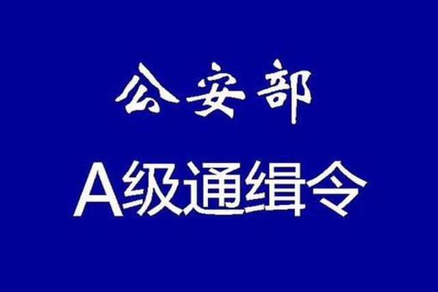 公安部发布第二批A级通缉令!通缉30人 广西有1人