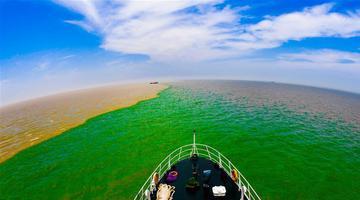 鸟瞰黄河入海的地方