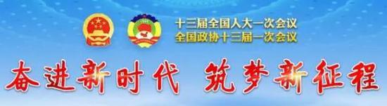 习近平总书记在十三届全国人大一次会议闭幕会上重要讲话引起