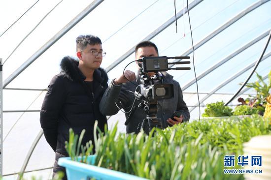 图为技术人员正在通过摄像机将大棚内的蔬菜生长情况直播到微信平台。(新华网张博摄)