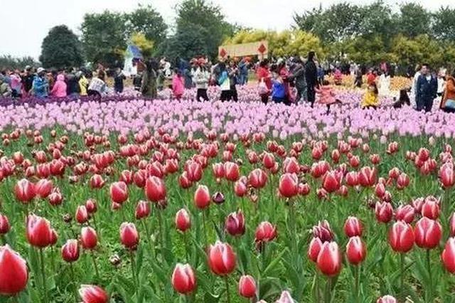 春节7天怎么过?这份活动攻略够柳州人嗨翻天