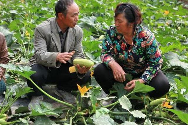 """南宁:打通农村科技惠民""""关键一公里"""""""