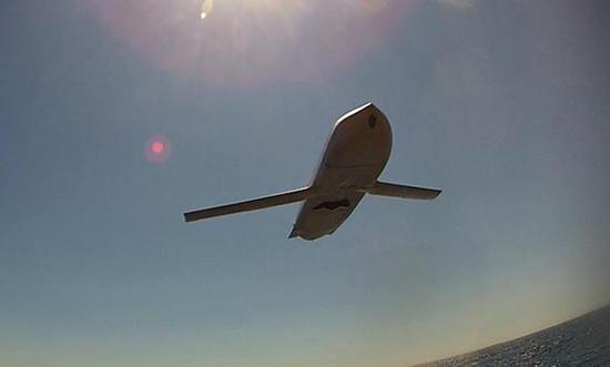 图:巡航导弹的弹翼面积都很小,这样才轻、阻力低