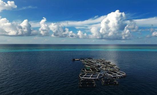 观察者网报道,美国太平洋舰队司令证实,特朗