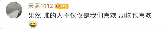 杏彩棋牌怎么玩,胜茂夫:一带一路合作能推进2030可持续发展目标实现