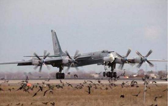 """图-95""""熊""""式战略轰炸机"""