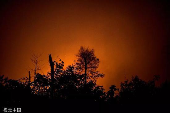 亚马逊雨林大火肆虐,满目疮痍。/视觉中国