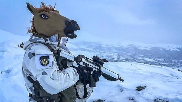 理想战术伪装?瑞典陆军山地猎兵戴马首面具巡逻