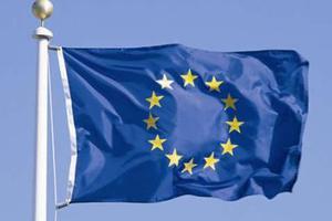 欧盟高官:欧洲必须团结 我们要和中美平起平坐