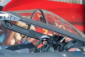 歼20座舱盖多结实?1.8公斤大鸟撞不坏 赶超F22F35