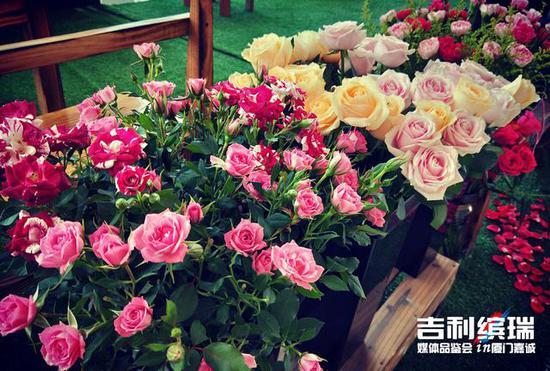 嘉诚吉利缤瑞上市 鲜花与美食的约会