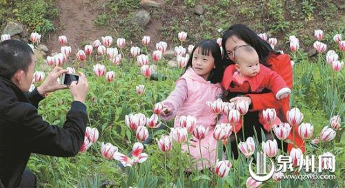 """带上""""二宝"""",一家人在热门景点鲜花港愉快赏花。(庄丽祥 林书修 潘登 摄)"""