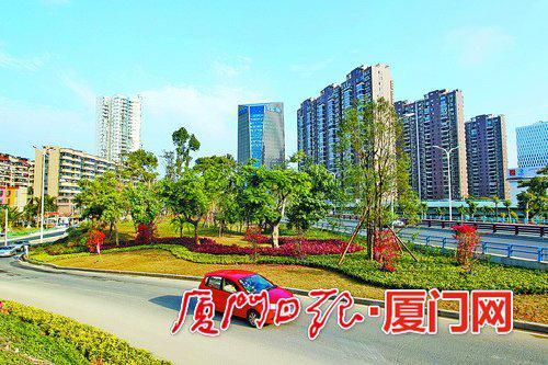 仙岳路海沧大桥桥头,绿化景观发生美丽蜕变。(本报记者 王协云 摄)